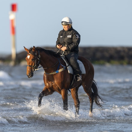 TheAutumnSun-10102018-0341 - Caulfield Guineas favourite THE AUTUMN SUN (Redoute's Choice - Azmiyna) at Altona Beach.    Ridden by Johanne Taylor.  Photo...