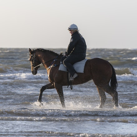 TheAutumnSun-10102018-1657 - Caulfield Guineas favourite THE AUTUMN SUN (Redoute's Choice - Azmiyna) at Altona Beach.    Ridden by Johanne Taylor.  Photo...