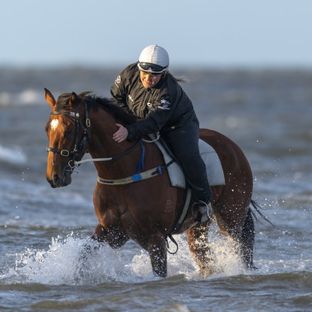 TheAutumnSun-10102018-9821 - Caulfield Guineas favourite THE AUTUMN SUN (Redoute's Choice - Azmiyna) at Altona Beach.    Ridden by Johanne Taylor.  Photo...