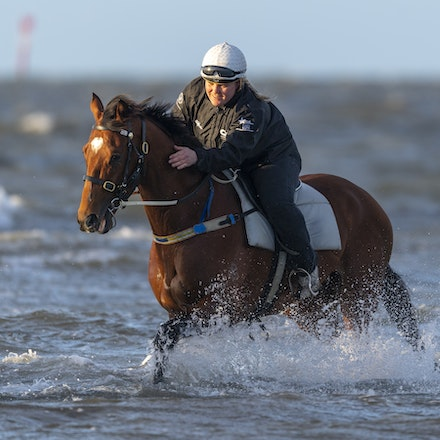 TheAutumnSun-10102018-9828 - Caulfield Guineas favourite THE AUTUMN SUN (Redoute's Choice - Azmiyna) at Altona Beach.    Ridden by Johanne Taylor.  Photo...