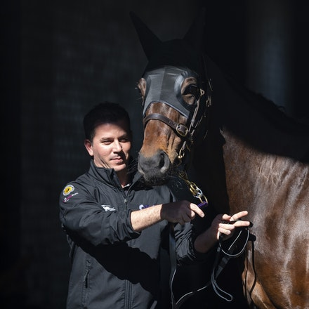 Winx-08182018-2826 - WINX arrives at Randwick before the G1 Winx Warwick Stakes.  Photo by Bronwen Healy.  The Image is Everything - Bronwen Healy Photography.