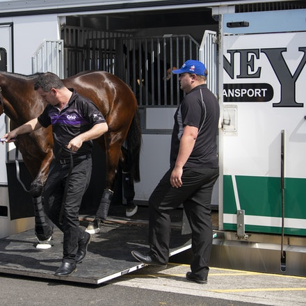 Winx-Arriving-09152018-39245 - WINX arrives at Randwick before the running of the G1 George Main Stakes, where she will attempt to win her 27th consecutive...