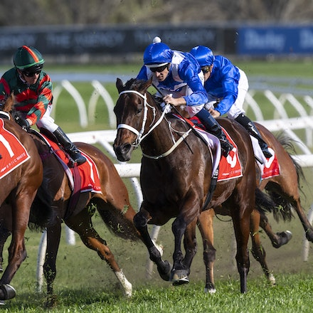 20180915:  Winx G1 George Main Stakes