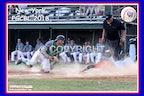 2018 New York PGCBL Umpires - Enhanced Photos