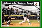 2018 Mohawk Valley Diamond Dawgs - Enhanced Photos