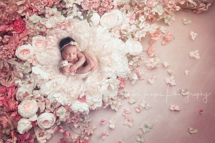 DivineImagesPhotography,newbornphotos,newborn photography-34