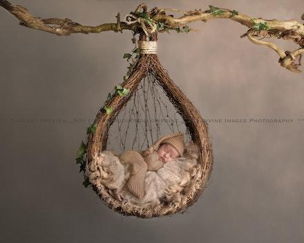 Taner.newborn 20.08.2018.-1