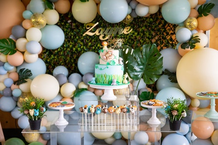 Zayne's 1st birthday party-221
