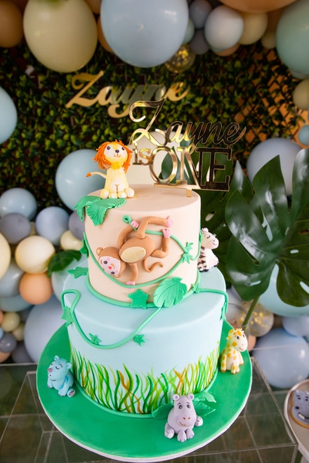 Zayne's 1st birthday party-222