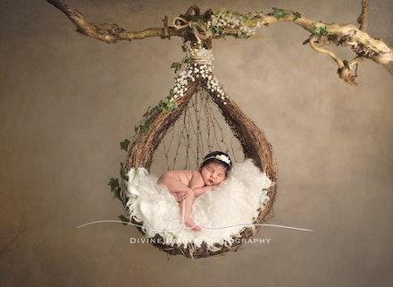 DivineImagesPhotography,newbornphotos,newborn photography-312