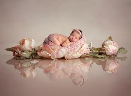 DivineImagesPhotography,newbornphotos,newborn photography-97