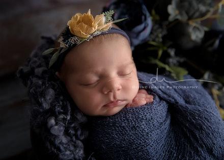 DivineImagesPhotography,newbornphotos,newborn photography-462