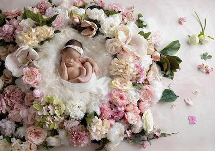 DivineImagesPhotography,newbornphotos,newborn photography-487