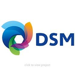 DSM+block