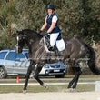 WHITTLESEA ARC DRESSAGE JACKPOT  MAY 19 - Images need to be color corrected when purchased