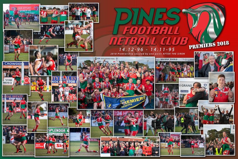 Pines FNC 2018 v1c_WM