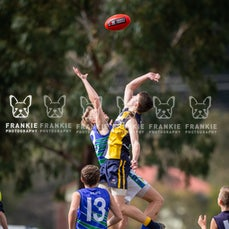 Beaconsfield v Berwick Springs 11 Aug 2019 Semi Final