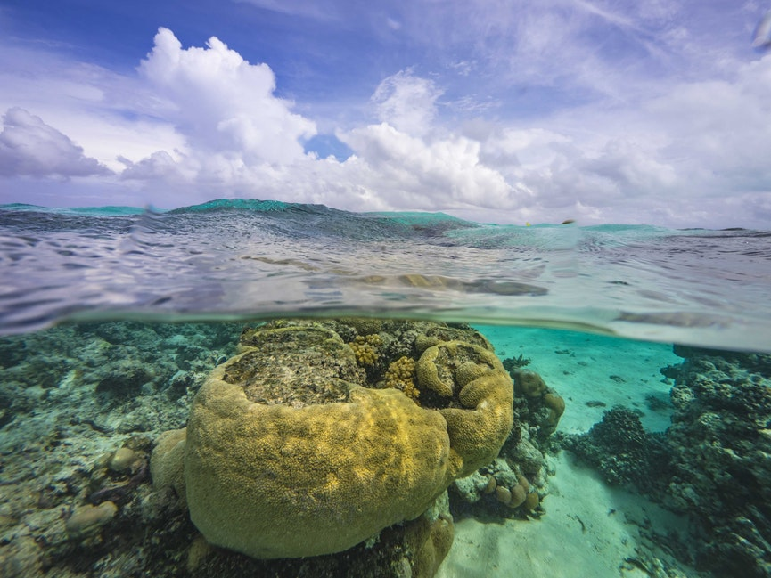 Coral Head and Clouds - Patch reefs near One Foot Island
