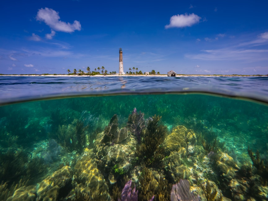 Historic Loggerhead Key Light Over Little Africa Reef - Built in 1858, the 157'-tall (51 m) light towers over the Little Africa coral reef in the foreground,...