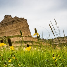 Scotts Bluff National Monument - A sentinel on the Nebraska plains, the massive sandstone bluff, 800 feet high (240 m), was a milepost on the Oregon Trail...