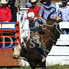 OMEO RODEO 2019