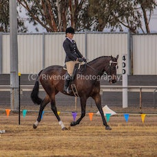 2018 ASP Country Champ, ( Ridden Hack,Hunter, Lead Rein And Breeds Ring)