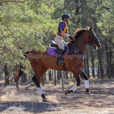Narrandera Pony Clubs 2019 SuperCross, Taken By Reece Evans (Eventing)
