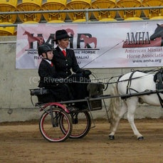 2019 IMHR National Show- Youth Harness,Ridden,Facny Dress & Sporting