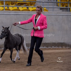 2019 IMHR National Show Friday- Led Classes