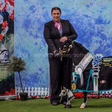 2019 IMHR National Show -Friday Photo Booth