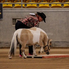 2019 IMHR National Show - Sat - Mini Pony - Trail & Jumping