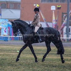 2019 Bathurst Royal, Friday -Ridden Novice Hunter Hack, ASP, ANSA