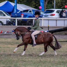 2019 Bathurst Royal - Sat - Supreme Hunter & Hacks