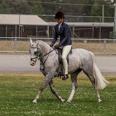 2019 Nat Captial Horse Show ( Fri Ridden)
