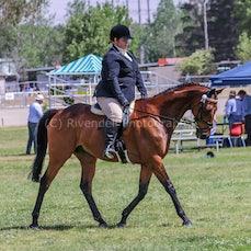 2019 National Captial Horse Show ( Sat Ridden)  Taken By Reece Evans
