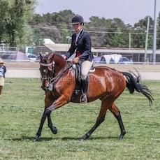 2019 National Captial Horse Show (Sat Ridden )