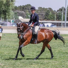 2019 National Captial Horse Show (Sat Ridden )