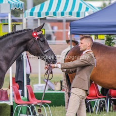 2019 National Captial Horse Show ( Sun Led)
