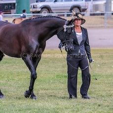 2019 National Captial Horse Show (Sun Led Taken by Reece Evans)
