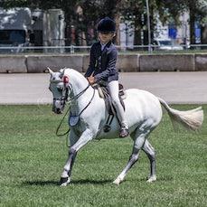 2020 Canberra Royal ( Ridden Australian Pony )