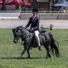2020 Canberra Royal - Ridden Shetland Pony