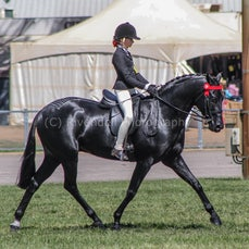 2020 Canberra Royal - Junior Girl Riders