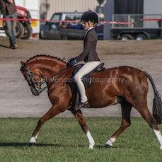 2020 Canberra Royal - Championships OPEN-HUNTER