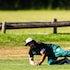 IK_201119_0033 - Forest Hill Cricket Club vs Blackburn South Cricket Club, Wednesday November 20th 2019 at Mirabooka Reserve