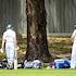 IK_231119_0019 - Forest Hill Cricket Club vs East Box Hill Cricket Club, Saturday November 23rd 2019 at Ballyshannassy Park