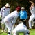 IK_231119_0228 - Forest Hill Cricket Club vs Laburnum Cricket Club, Saturday November 23rd 2019 at Forest Hill Reserve
