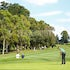 IK_080320_0187 - 2020 Riversdale Cup, Riversdale Golf Club Melbourne.Photo - Ian Knight / Golf NSW