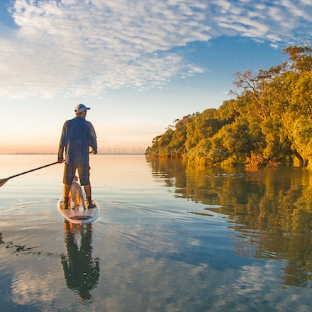 Mangrove reflections - Best friends paddle together on Moreton Bay, enjoying the mangrove reflections.