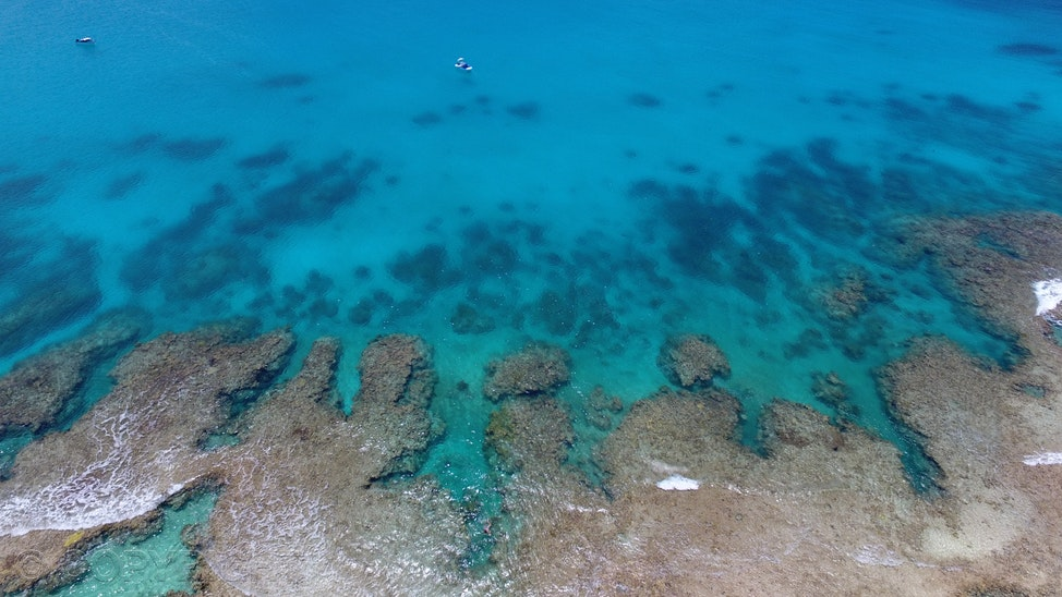 Reef edge - Aerial drone view of the fingers of reef protruding out into clear blue ocean, North West Island, Southern Great Barrier Reef.  Image by Cathy...