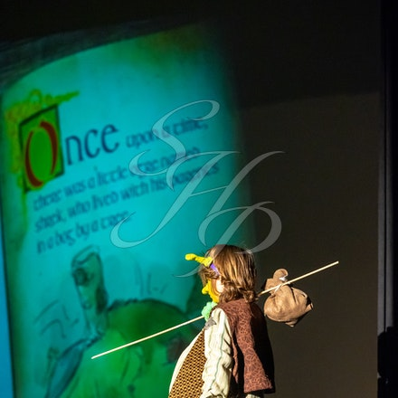 Shrek Jr Luminary - Photos from the Final Performance of Shrek Jr. July, 2019